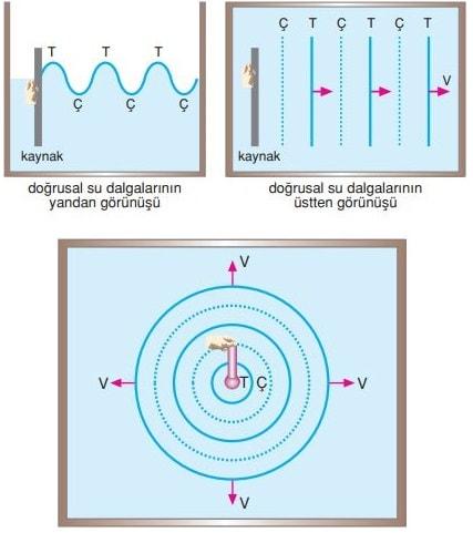 şekillerine göre dalga çeşitleri