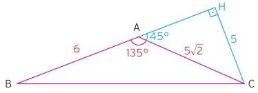özel üçgenin alanı çözümü