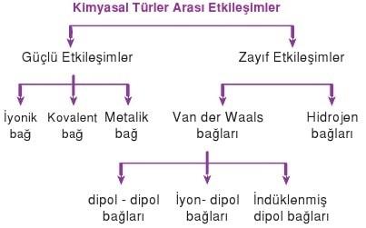 kimyasal türler arası etkileşimler